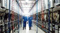 Workers at a dairy factory of Vinamilk. State investment arm SCIC owns a 45 percent stake in the company. File photo