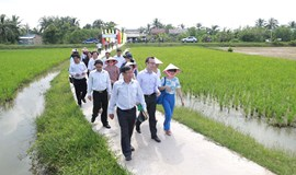 Foreign donors help Vietnam province deal with climate woes