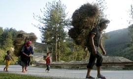 For Asia-Pacific, the time to shine in global anti-hunger effort is now