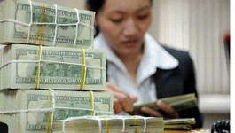 A teller counts US dollar notes at a bank in Hanoi. Photo: Anh Vu/Thanh Nien