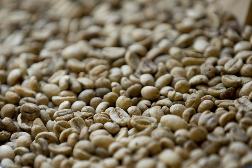 Robusta coffee beans sit in a container inside a coffee store in Hanoi, Vietnam.