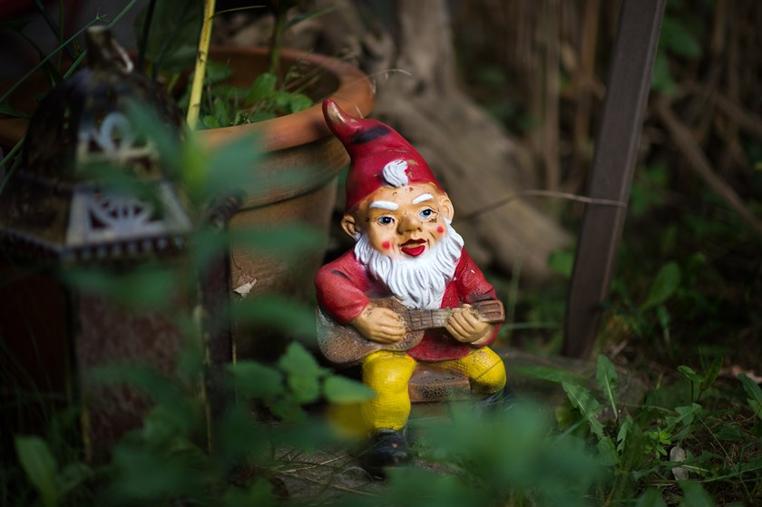 A garden gnome stands with a guitar in his hands in a garden in Dresden, Germany.