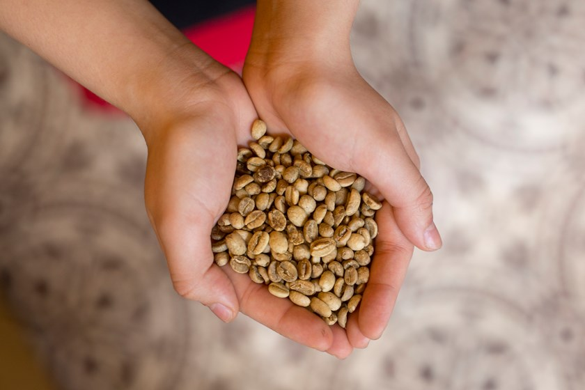 An employee holds arabica coffee beans in an arranged photograph inside a Trung Nguyen Corp. coffee store in Hanoi, Vietnam, on Saturday, May 31, 2014.
