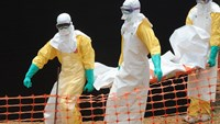 Staff from the Doctors without Borders carry a victim of Ebola in Guekedou, on April 1, 2014.