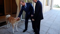 Russian President Vladimir Putin pats his dog Yume, an Akita-Inu, as Japanese Prime Minister Shinzo Abe looks on during a meeting in the Bocharov Ruchei residence in Sochi, Russia.