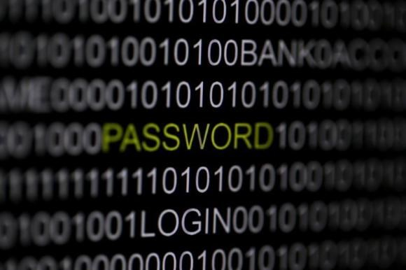 The word 'password' is pictured on a computer screen in this picture illustration taken in Berlin May 21, 2013.