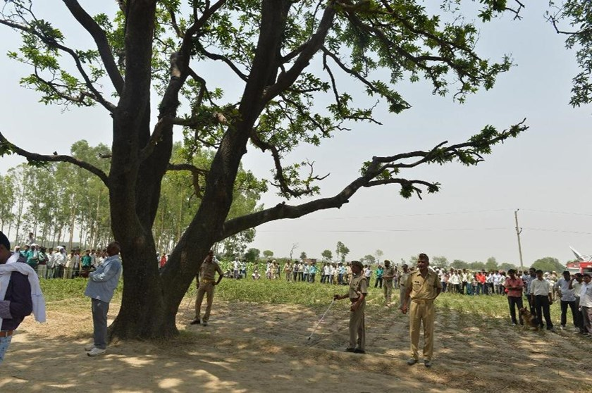 Police at the tree where the bodies of two girls were found hanging in Badaun district, India's Uttar Pradesh state, on May 31, 2014