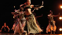 A performance by Turkish dancing troupe Fire of Anatolia or Sultans of the Dance