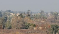An Islamist flag flying in the fields in the area of Sayed Ghareeb, some 70 kilometres north of Baghdad, Iraq, on January 2, 2015