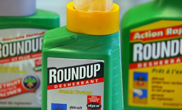 """IARC classified the herbicide glyphosate -- the active ingredient in Roundup -- as """"probably carcinogenic"""" on the basis of """"limited evidence"""" of cancer among humans.Photo: AFP"""