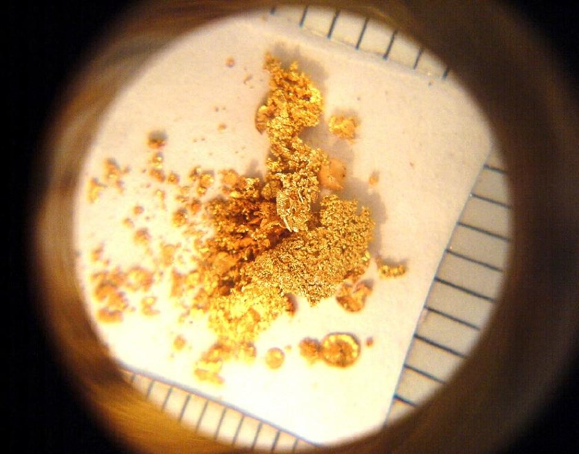 Human feces contains gold, seen here through a magnifier, and other precious metals that could be worth hundreds of millions of dollars, experts say