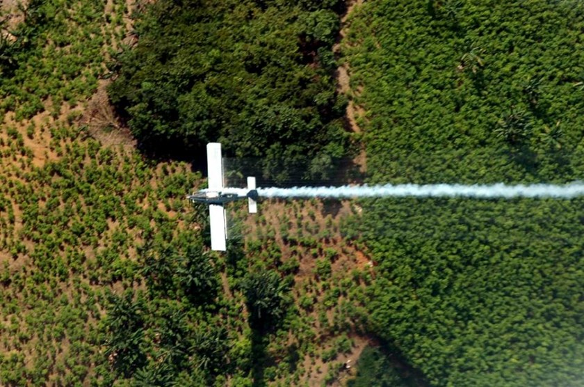 An airplane sprays coca plants in El Catatumbo, Norte de Santander department, Colombia, near the border with Venezuela on June 4, 2008