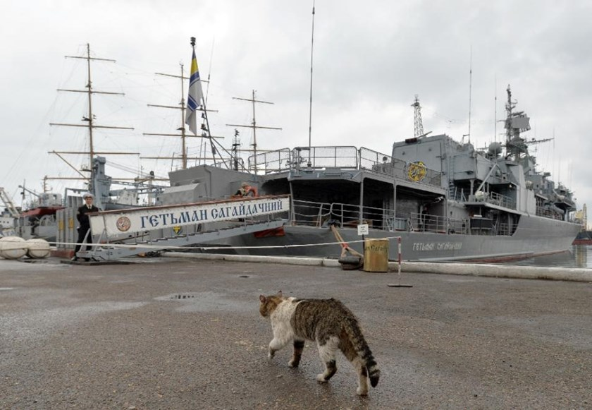 A cat walks on the quai next to the frigate Getman Sagaidachniy (U130), the flagship of the Ukrainian Navy in the southern city Odessa on May 3, 2015