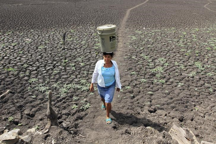 A woman carries a bucket of water on her head in Santa Isabel August 19, 2014.