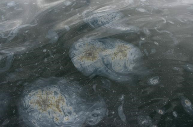 An oil spill makes patterns in a marine algae in the waters off Refugio State Beach after a massive oil spill on the California coast in Goleta, May 21, 2015.