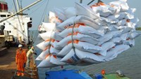 Philippines buys 150,000 tonnes rice from Vietnam, set to import more