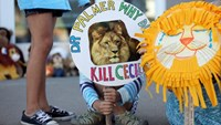 Piper Hoppe, 10, from Minnetonka, Minnesota, holds a sign at the doorway of River Bluff Dental clinic in protest against the killing of a famous lion in Zimbabwe, in Bloomington, Minnesota July 29, 2015.