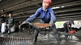 A woman tries salvage coal after heavy rainfall flooded coal mines in Quang Ninh Province. Photo: Ngoc Tang