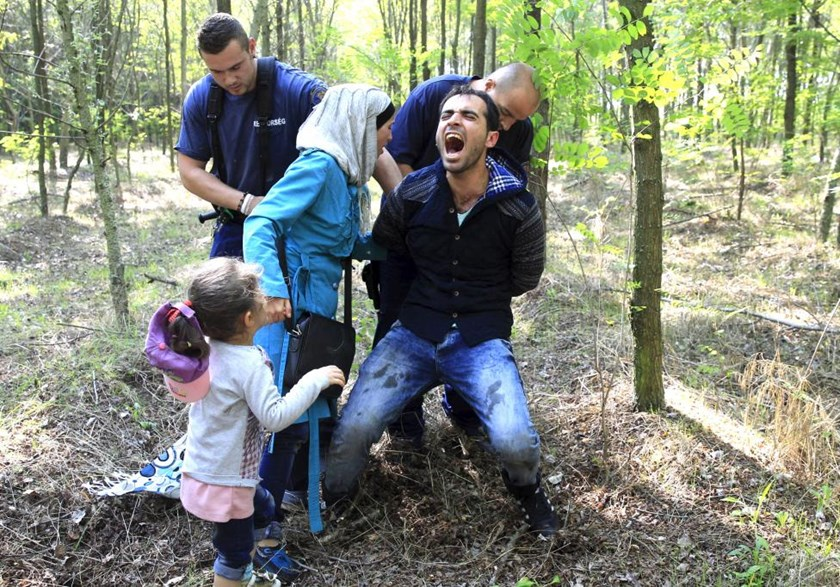 Hungarian policemen arrest a Syrian migrant family after they entered Hungary at the border with Serbia, near Roszke, August 28, 2015.