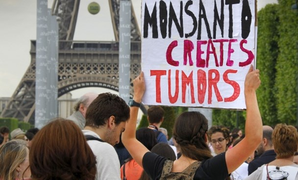 Demonstrators protest Monsanto Co. in Paris on May 23. The company says it will appeal a ruling by a French court that its herbicide Lasso poisoned a French farmer.