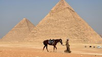 An Egyptian guide walks leading a horse at the Giza pyramids on the southern outskirts of Cairo, on September 27, 2015