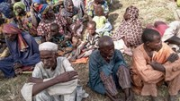 A picture released by the Nigerian army on October 28, 2015 shows some of the 338 people held by Boko Horam after they were rescued during an army operation and evacuated to Mubi, northeast Nigeria