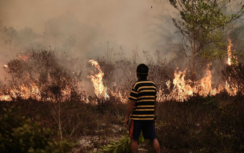 A villager looks at a peatland fire on the outskirts of Palangkaraya city, Central Kalimantan, Indonesia, on Oct. 26.