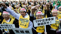 Farmers in Japan protesting against the TPP earlier this year