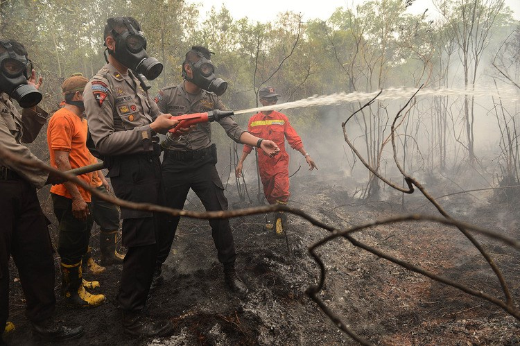 Indonesian police and firefighters extinguish a fire on burning peat land in the district of Kapuas in the Central Kalimantan province on Borneo island. Photo: AFP