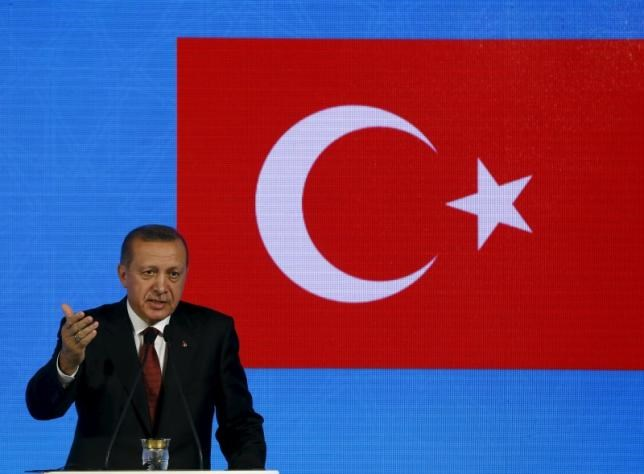 Turkish President Recep Tayyip Erdogan speaks during a news conference after a meeting Japanese Prime Minister Shinzo Abe in Istanbul, November 13, 2015.