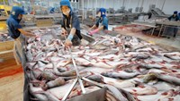 U.S. runs new rule over catfish suppliers, giving Vietnam time to comply