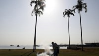 A health worker carries out fumigation as part of preventive measures against the Zika virus and other mosquito-borne diseases at the seafront in Panama City February 2, 2016.