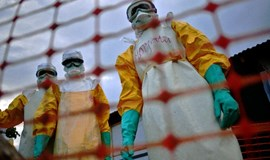 S. Leone Ebola flare-up over, virus halted in West Africa: WHO