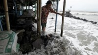 A villager walks on a stone barrier as sea water reaches her house in Mayangan village in Subang, Indonesia's West Java province