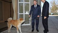 Russian President Vladimir Putin with his dog Yume greets Japanese Prime Minister Shinzo Abe at the Bocharov Ruchey state residence in Sochi in February 2014, prior to the start of the Sochi Winter Olympic Games. Photographer: Sasha Mordovets/Getty Images