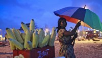 A woman selling grilled corn takes shelter under an umbrella as it rains on a beach in Mumbai. Photo: Reuters