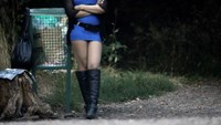 A prostitute waits for customers along a road of the Bois de Boulogne in Paris August 28, 2013.