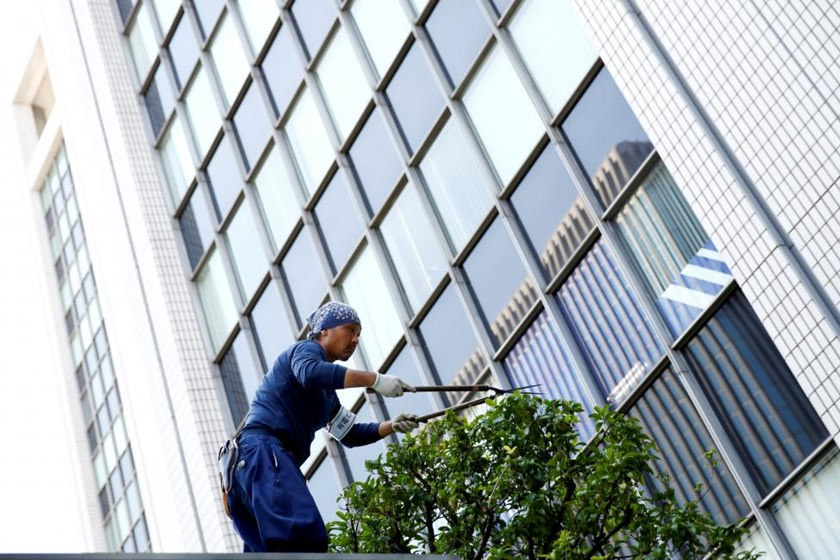 A worker cuts a tree in front of an office building at a business district in Tokyo, Japan, May 18, 2016.