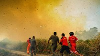 Firefighters work to extinguish fires in Riau, Indonesia in March 2016.