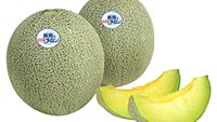 6 Vietnamese caught in Japan for stealing melons