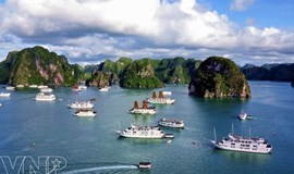 Vietnam to introduce e-visas next year