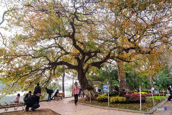 Hanoi offers free Wi-Fi around Hoan Kiem Lake next month