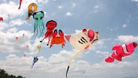 Int'l kite fest returns to Vietnam beach town