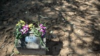 This picture taken on December 4, 2014 shows flowers from Mathias Mann of Germany placed on an unmarked grave for a German colleague who died during the 2004 tsunami at Bang Muang cemetery in Phang Nga southwestern Thailand. Photo: AFP