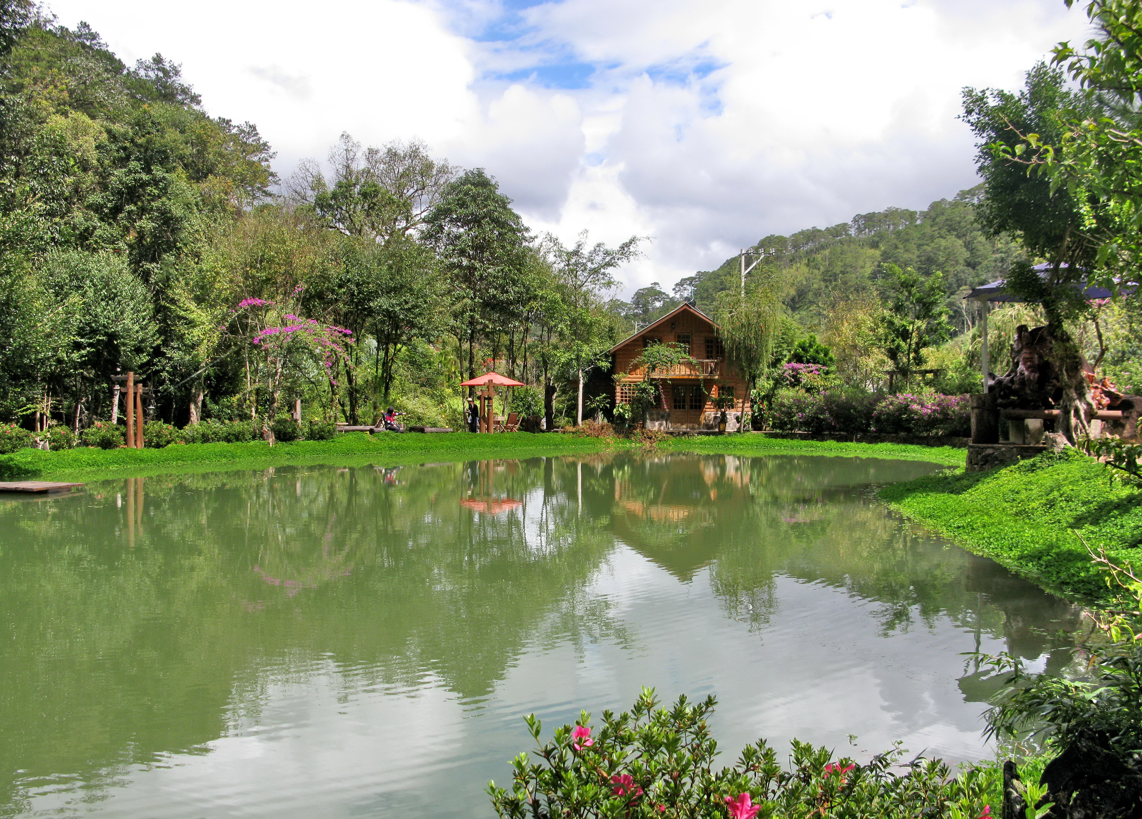 Discover dalat s quiet charm at the forest ghost inn travel thanh