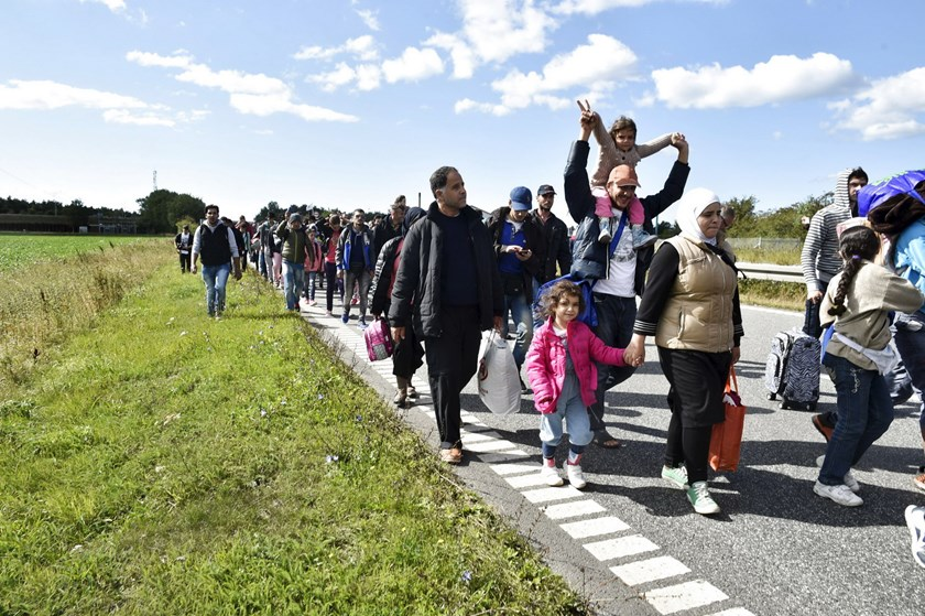 A large group of migrants, mainly from Syria, walk towards the north on a highway in Denmark September 7, 2015. The migrants intend to reach Sweden and seek asylum there. Photo: Reuters/Bax Lindhardt/Scanpix Denmark