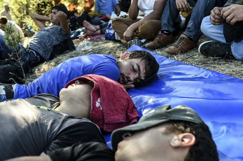 Syrian refugees and migrants rest in the shade as they gather near the highway on the way to the Turkish-Bulgarian border at Edirne on September 15, 2015, in Edirne. Photo: AFP/Bulent Kilic