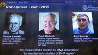 The portraits of the winners of the Nobel Prize in Chemistry 2015 (L-R) Sweden's Tomas Lindahl, Paul Modrich of US and Turkish-American Aziz Sancar are displayed on a screen during a press conference on October 7, 2015 at the Royal Swedish Academy of Sciences in Stockholm. Photo: AFP/Jonathan Nackstrand