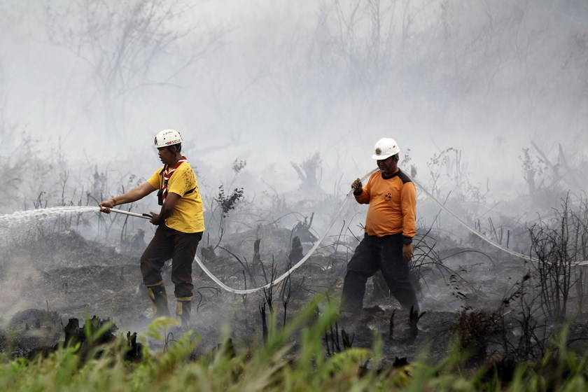 Indonesian men put out a fire in Ogan Ilir, southern Sumatra on October 22, 2015. Photo: AFP/Abdul Qodir