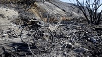 Charred bicycle parts stand in a makeshift encampment during the aftermath of a wildfire in the Solimar Beach area of Ventura County, California December 26, 2015. Photo: Reuters/Patrick T. Fallon